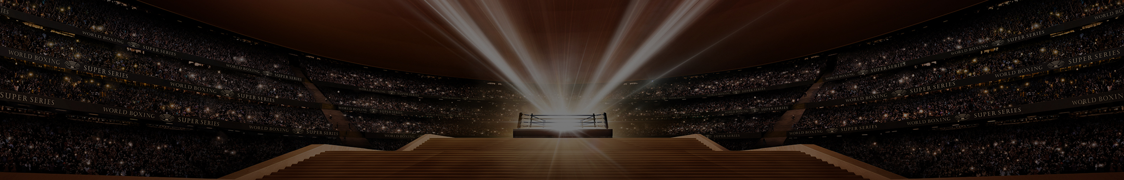 World Boxing Super Series - Cookies Policy